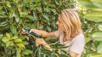 Aku zahradní nůžky Bosch EasyPrune - 3.6V, do 25mm, 0.49kg, kód: 06008B2100 Bosch HOBBY